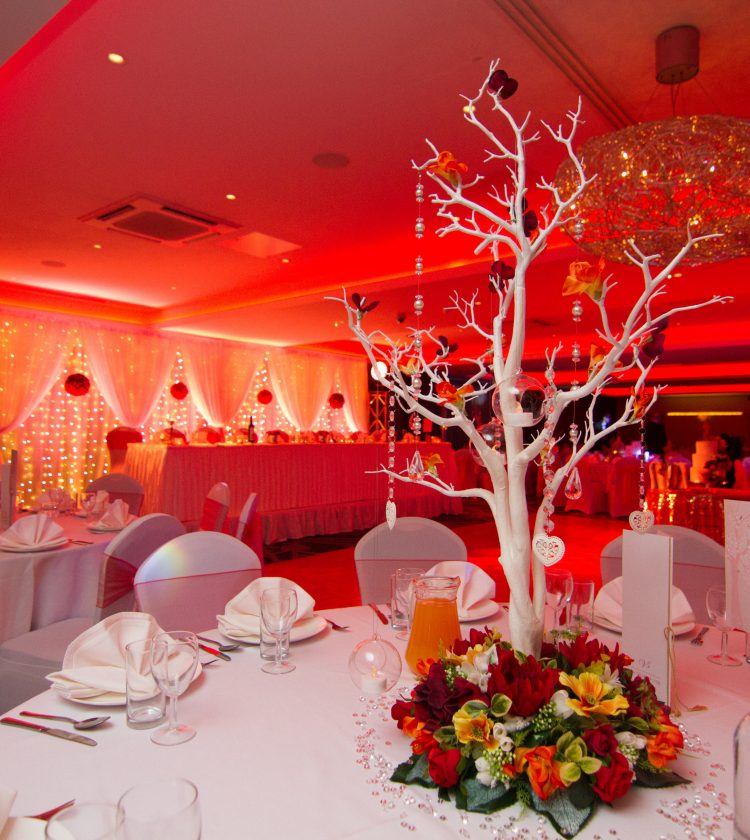 Weddings - Red Lighting Tree Decor - IBIS Forum Venue Stevenage