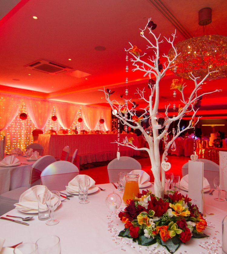 Weddings - Red Lighting Tree Decor - IBIS Forum Venue Stevenage